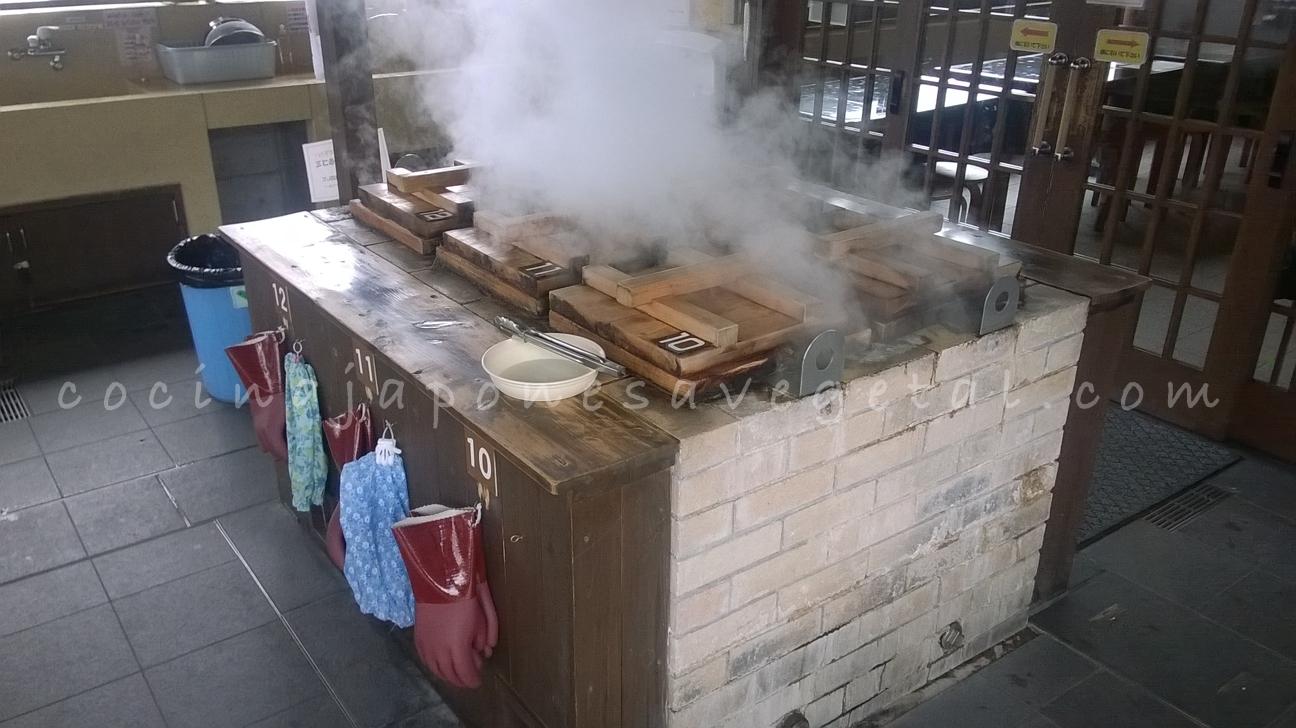 Cocinar al vapor de la tierra comer verduras for Cocinar con horno de vapor